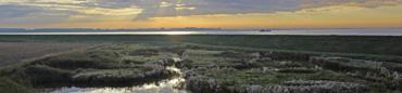 Zeeuwse natuurgebieden