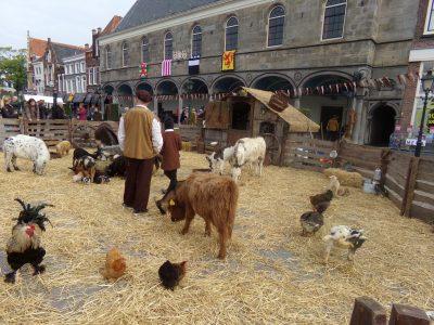 Kinderboerderij, een allegaartje