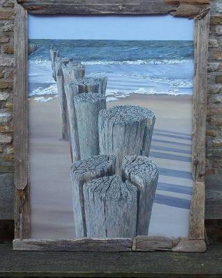 Palen aan het strand
