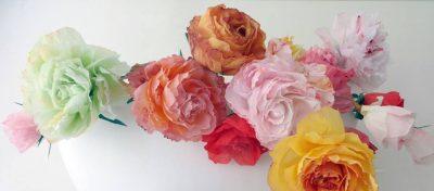 Roos en kleurig