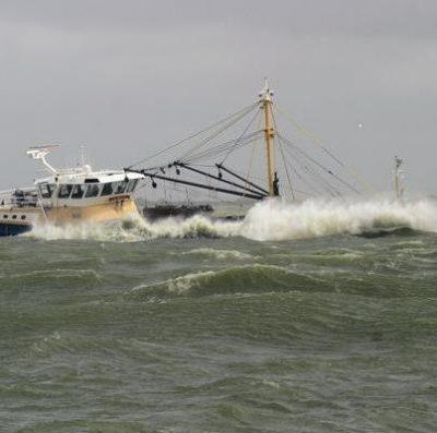 Zelf vissen en verhandelen, meer eigen baas