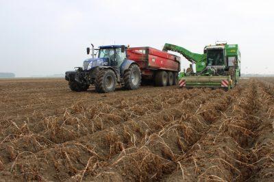 Aardappel rooien met de meest moderne machines