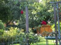 De gezellige en smaakvolle tuin