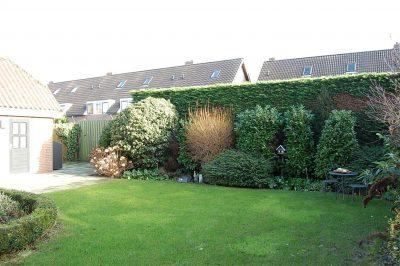 De mooie, vrije achtertuin