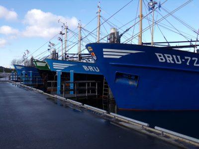 Een deel van de vissersvloot in de haven