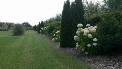Een grandioze tuin