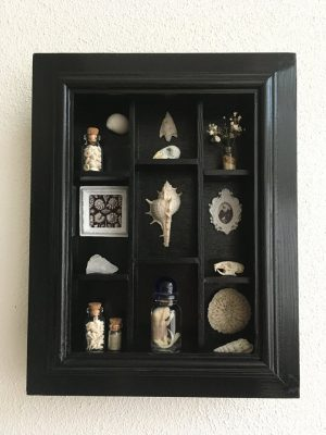 Een schelpenkabinetje van haar hand