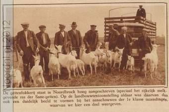 Grijpskerker boeren met hun geiten