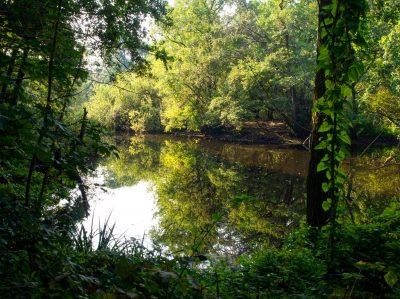 Heerlijk wandelen in de natuur