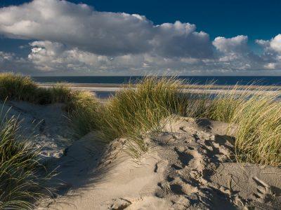 Heerlijke stranden en duinen