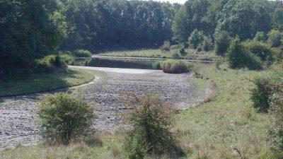 Het Dijkwater, opgedroogd na een hete zomer
