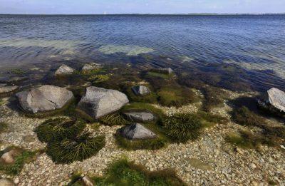 Het ligt op u te wachten - foto RWS Natura 2000