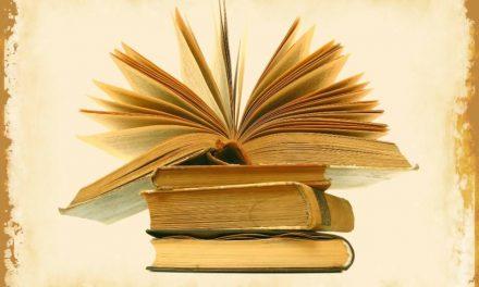 Vanaf 24 juni – Buitenkans voor boekliefhebbers in Bruinisse.
