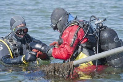 Populair duiken in de Oosterschelde. Foto www.laatzeelandzien.nl