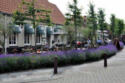 Scharendijke, een levendig dorp