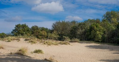 Strand en duinen - Foto Aren Admiraal