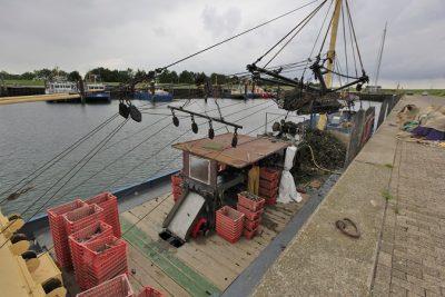 Verwerkingslijn aan boord van een oesterkotter -Foto: Ben Biondina - laatzeelandzien.nl