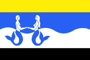 Vlag van Schouwen-Duiveland
