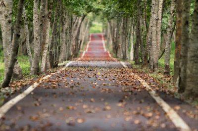 ..de lange weg naar succes