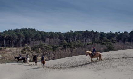 5 Romantische plekken in Zeeland
