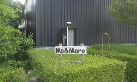 Mo&More
