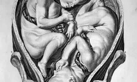 16 oktober 1613 – de doop van een vierling