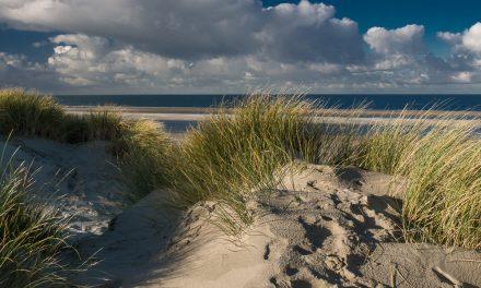 Roadtrip door Zeeland: de mooiste plekken