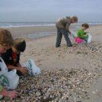 Op fossielenjacht in Zeeland